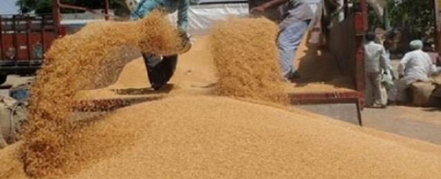 وزير التموين: مخزون القمح يكفي حتى أوائل مايو