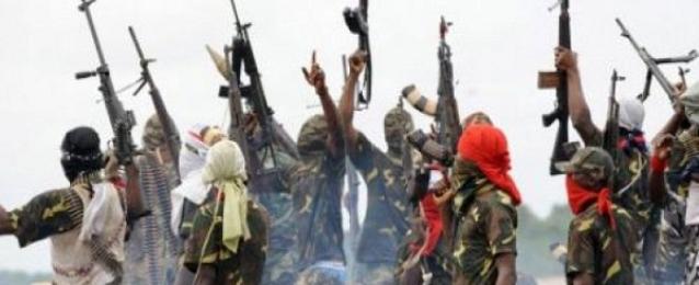 """الجيش النيجيري يدمر 10 معسكرات لـ""""بوكو حرام"""".. ويقتل عددا من مسلحي الجماعة"""