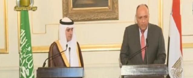شكري والجبير: لا خلافات بين مصر والسعودية بشأن سوريا واليمن