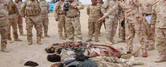قتلى من داعش بالأنبار.. وتقدم للقوات العراقية