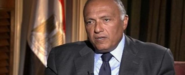 وزير الخارجية: قمة التكتلات الثلاثة فرصة للتواصل بين السيسي والقادة الأفارقة