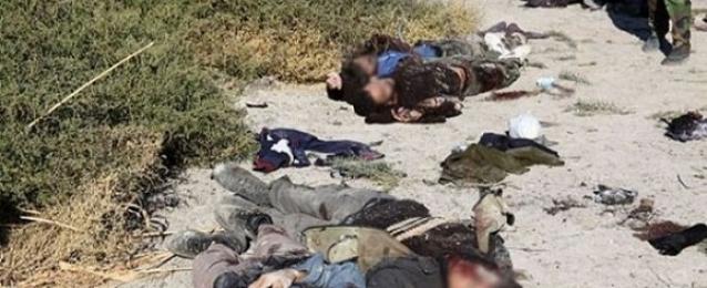 مقتل 25 من داعش بنيران عراقية وقصف التحالف في بيجي والأنبار ونينوي