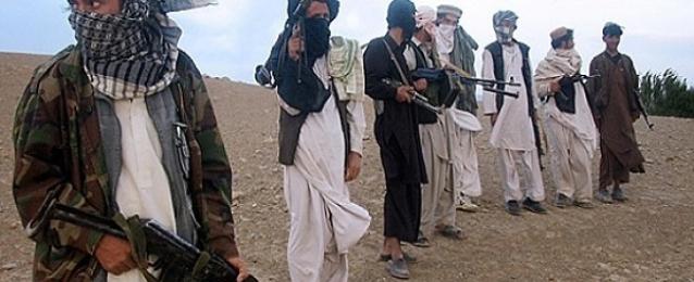 مقتل وإصابة 22 من مسلحي طالبان في عمليات أمنية وسط أفغانستان